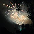 Annual fireworks festival on the Brno dam - panoramio - Honza and Ivana Ebr (1).jpg