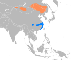 Breeding (northern areas) and wintering (southern areas) ranges in orange