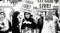 Anti-Israel Protest 45741 (14624194090).jpg