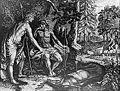 Apollo e Ciparisso - dalle ''Metamorfosi'' di Ovidio - Amsterdam, P. et J. Blaeu, 1702.jpg