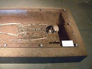 Argilly - The Merovingian tomb