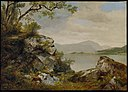 Asher Brown Durand - Lake George, New York - 47.1233 - Museum of Fine Arts.jpg