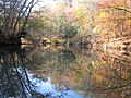 Autumn Reflection Cole Mill Access Eno River SP NC 3456 (4091391246).jpg