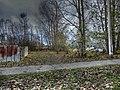 Autumn Trees And Foliage - panoramio.jpg