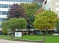 Autumn on Campus. Taken by Flickr user (15th October 2012).jpg