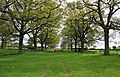 Avenue, Canon Frome Court - geograph.org.uk - 1276316.jpg