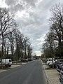 Avenue Van Bever.jpg