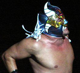 A close of up of a masked wrestler, wearing a blue fabric mask with white horns and white tassels from the back of the mask.