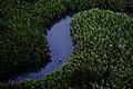 Baliangao Protected Landscape and Seascape Area.jpg