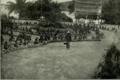 Bananas being brought by Children into Banzyville, 1906.png