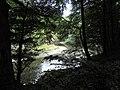 Banat,Nera Canyon - panoramio (37).jpg
