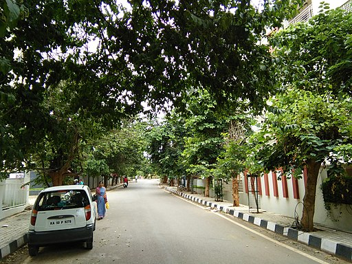 Bangalore Judicial Layout street trees