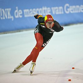 Bart Swings 2012 (borderless).jpg