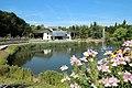 Bassin des Goachères à Massy en Essonne le 3 août 2015 - 30.jpg