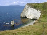 Bats head and portland dorset.jpg