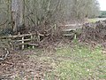 Battered stiles and fencing at the edge of Lord's Wood - geograph.org.uk - 1730909.jpg