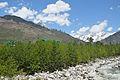 Beas Valley - Palchan - Kullu 2014-05-10 2274.JPG