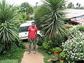 Beautiful garden in Addis Ababa, fertilised with urine and compost (3562076911).jpg