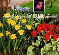 Beautify America with Holland flowerbulbs (1968) (19737930783).jpg