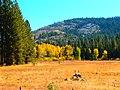 Bell Meadow (8447480195).jpg