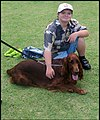Ben with an Irish Setter-1 (16743553930).jpg