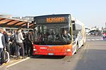 Bergamo autobus 588.jpg