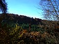 Best Weather In Autumn - panoramio.jpg