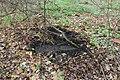 Betonplatte - panoramio (1).jpg