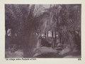 Bild från familjen von Hallwyls resa genom Egypten och Sudan, 5 november 1900 – 29 mars 1901 - Hallwylska museet - 91608.tif