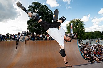 Hawk in 2015 Birdhouse team in Faelledparken Skatepark (19175646904).jpg