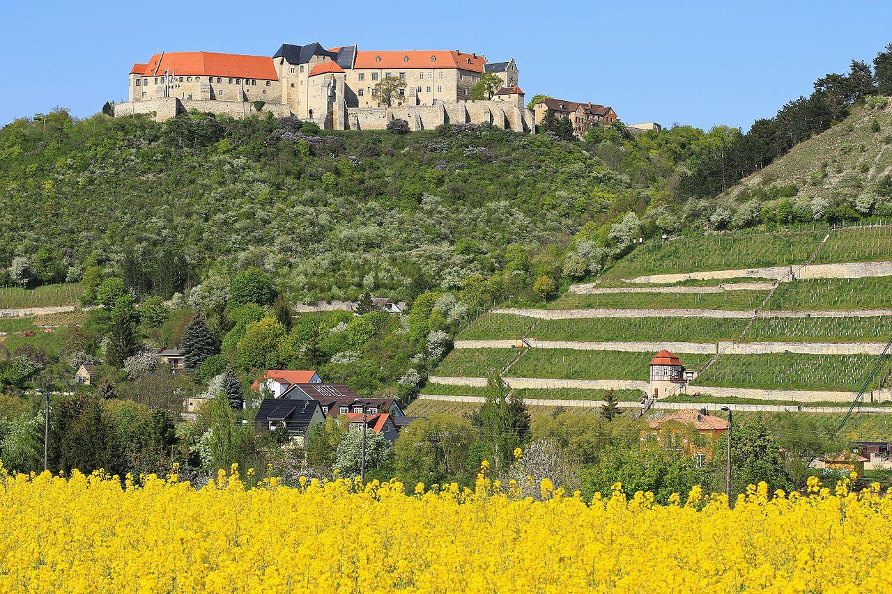 Blick zum Schloss Neuenburg 2H1A0214WI.jpg