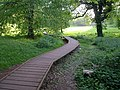 Boardwalk, Cockington - geograph.org.uk - 812817.jpg