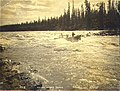 Boat navigating Whitehorse Rapids on the Yukon River, Yukon Territory, 1898 (MEED 32).jpg