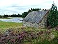 Boathouse - geograph.org.uk - 248664.jpg