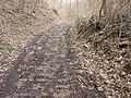 Borač, stará dlážděná cesta do Lomnice 03.JPG