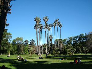 Prado, Montevideo - The Botanic Garden in Prado Park