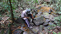 Boulders in a stream, Atlantic forest, northern littoral of Bahia, Brazil (15347794851).jpg
