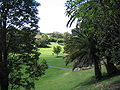 Brennan Park Wollstonecraft Sydney Australia 2.jpg