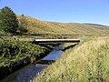 Bridge over the Tarras Water - geograph.org.uk - 574165.jpg