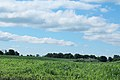 Bucolic Vista, Brookville Road, Salem Township, Michigan - panoramio.jpg