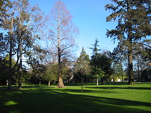 Burlingame washington park2.JPG