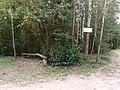 Bus stop near Siadlišča - panoramio.jpg