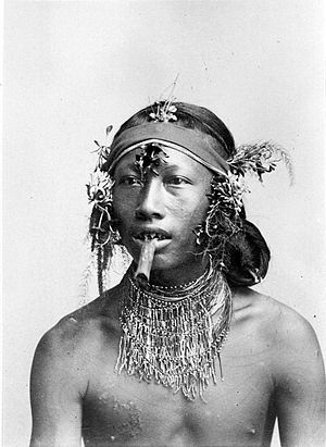 Human tooth sharpening - A man with filed teeth (probably Mentawai) smokes in a photograph by Dutch photographer Christiaan Benjamin Nieuwenhuis who worked in Sumatra