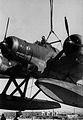 CRDA Cant.Z.506B Airone.jpg