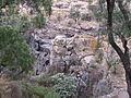 Cañada del río Laja, jardín botánico El Charco del Ingenio, San Miguel de Allende Guanajuato, México.JPG