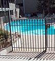 Cal-Neva Casino, NV, Lake Tahoe, Pool on State LIne 9-2010 (5782876474).jpg