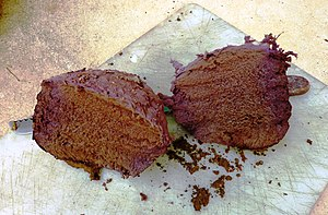 """Calvatia cyathiformis - Showing the """"chocolate-cake"""" look of the interior of mature specimen."""