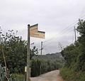 Camí del Mig.jpg