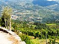 Caminho de Jacinto XIII (4835570298).jpg