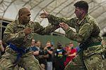 Camp Lemonnier Combatives Tournament 170113-F-QF982-1888.jpg